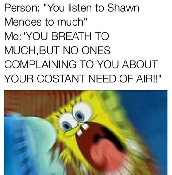 Don't mess with Shawnie!!!    Here is the meme of the day, hope you like it and don't forget to leave your comment 💗  ~Credits to IDK  🌹 #shawnmendes #mendesarmy #shawnmendesmemes #memes #laugh #shawn #mendes #freetoedit 🌹