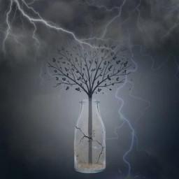 dark grey storm lightning tree