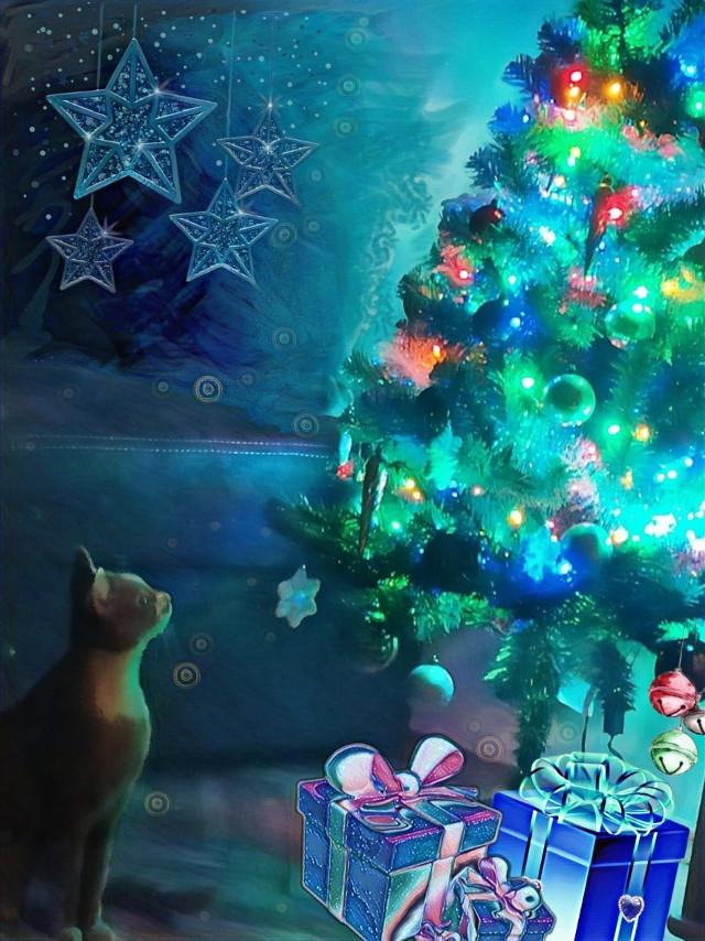 #freetoedit# marrycristmas#cat#presents#sweet