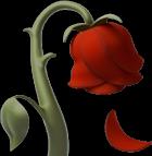 #emoji #iphone #iphoneemoji #emojiiphone #róża #red #kwiat #kwiaty #czerwony #rose #rosered #redrose
