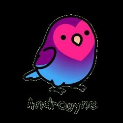 androgyne birb #bird #birb #lgbt #androgyne #pride #lovewins #freetoedit
