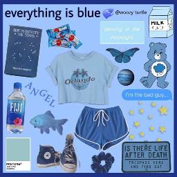 nichememes nicheclothes art aesthetic blue