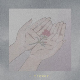 flower aesthetic aestheticedit aestheticanime aestheticflower freetoedit