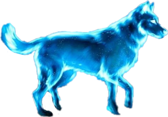 #BlueWolf