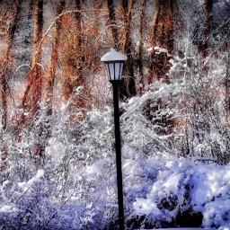 angeleyesimages snow winter streetlight landscapephotography freetoedit