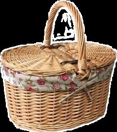 softaesthetic soft aesthetic picnicbasket freetoedit