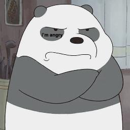 panda 可愛い 07 雰囲気