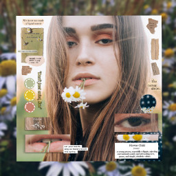 freetoedit girl aesthetic daisyflower flower