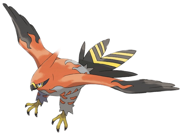 #pokemon #birds