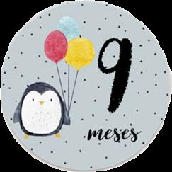 #mesversario #9meses #adesivos #picsart