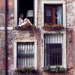 freetoedit ross book window