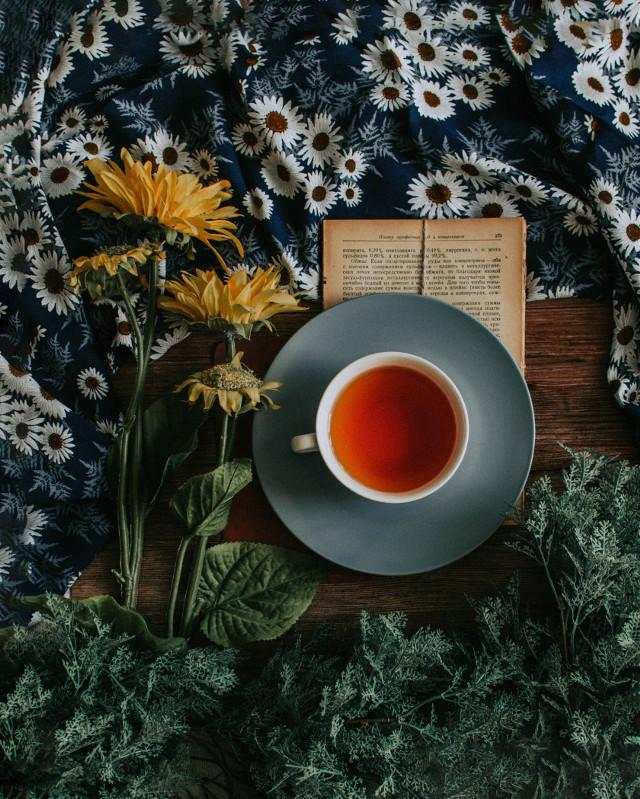 Unleash your creativity and remix this image! Unsplash (Public Domain) #tea #hottea #cozy #freetoedit