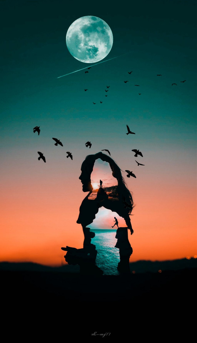 A simple double exposure edit! It's easier than you think. All you have to do is add a second photo to your base image and take the opacity down!⁠ 👌Edit by @sh-mj77 #doubleexposure #sea #birds #freetoedit