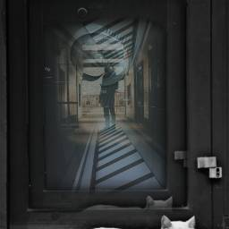freetoedit reflections mirror glass door