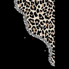 vsco leopard vscoleopard vscogirl fashion freetoedit