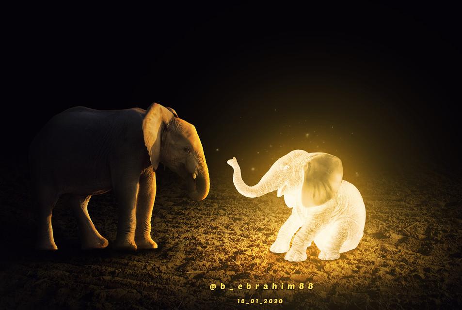 #dubleexposure #neon #photography #photshop #animal #clouds #wings #manipulation #myedit #animals #elephant #glow #colors #colorful #picsart  @b_ebrahim88  #freetoedit