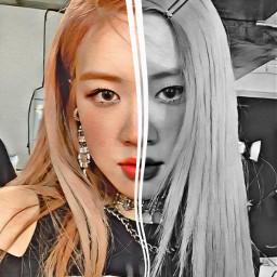 freetoedit rose kpop k-pop blackpink