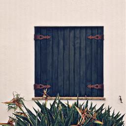 urbanexploration housewall softgrungetextured window woodshutters freetoedit