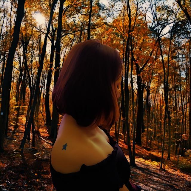 #freetoedit #forest #joestar #jojos
