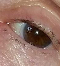pceyes eyes