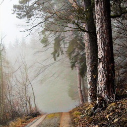 freetoedit adventure adventuretime road country