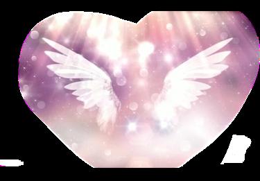 #爱心翅膀。