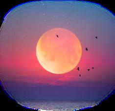 #lua #moon #luacheia #luanova #ceu #sky #noite #night #noitedelua #luar #sunset #pordosol