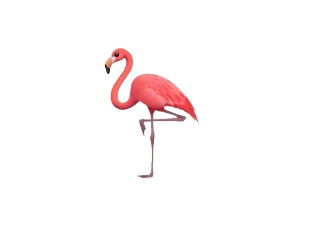#catcuratedflamingo