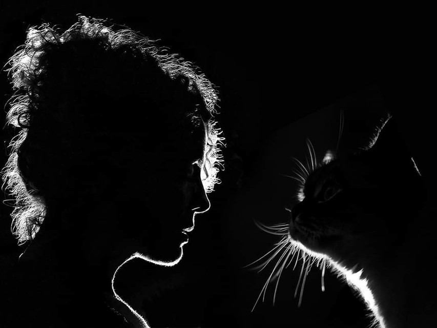 # кошка и её женщина..