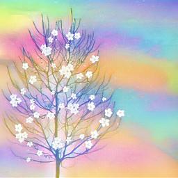 freetoedit tree aestetic rainbow nature