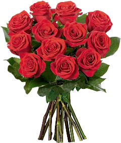 valentinesday flowers redroses foryou happyvalentinesday freetoedit