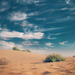 nature sanddunes wildplants skyandclouds beautifulcloudformations freetoedit