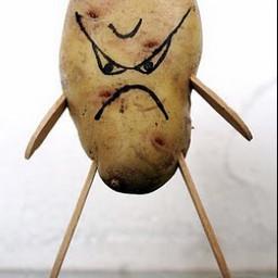 randompic potatolife potato potatoes bootiful