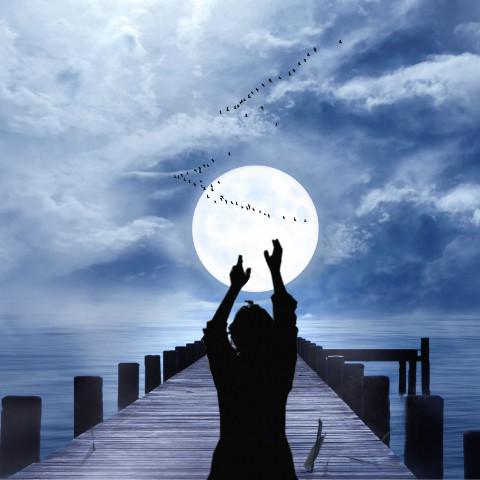 #ircdancinginthemoonlight,#silhouette,#freetoedit,#moon,#nature