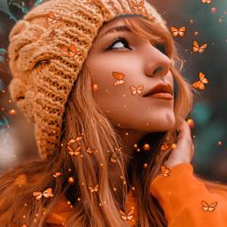 butterfly butterflies orangeaesthetic freetoedit
