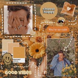 harrystyles cottagecore aesthetic orange yellow freetoedit