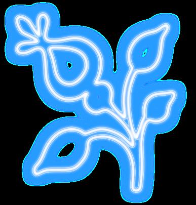 #neon #flower #nature #flowers