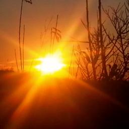 freetoedit sunrise sunday morning warmth