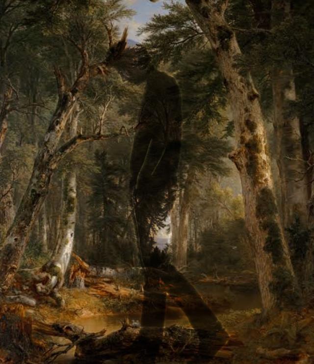 #interesting #art #woods #edit