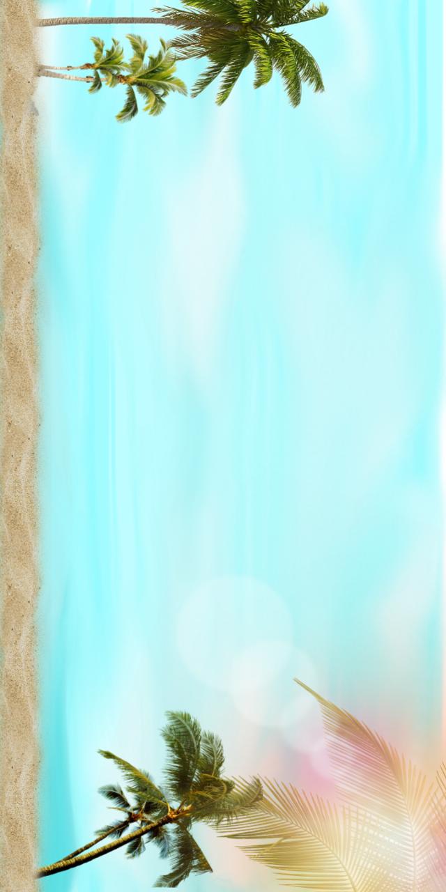 #palmtrees #blue_sky #tome_artes