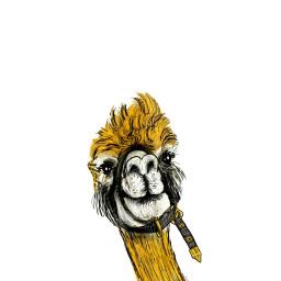 freetoedit drawing golden sketch llama