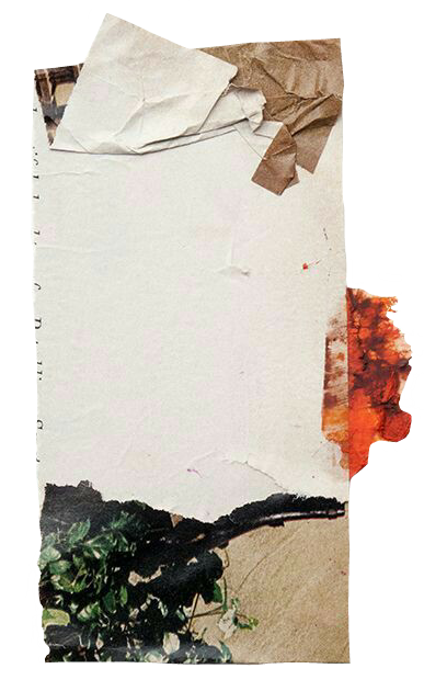 #aesthetic #tumblr #overlays #frame #flowers #paper
