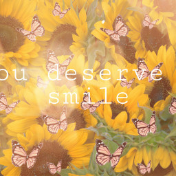 smile sunflower butterflys freetoedit
