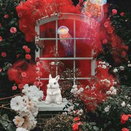 freetoedit magical garden plants flowers madewithpicsart roses window wallpaper smoke rabbit jellyfish inspiration art