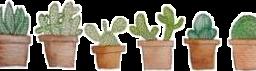 plants cute aesthetic freetoedit