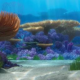 disney pixar findingnemo findingdory ocean freetoedit