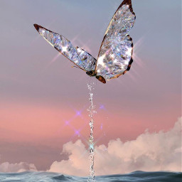 butterfly butterflyeffect heypicsart new webeditor freetoedit