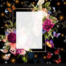 butterflys wallpaper freetoedit background girly