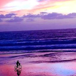 beach love nature bicycle sunset