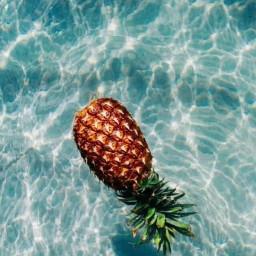 pineapple pool paradise aesthetic fruit